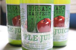 apple juice urban harvest